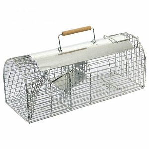 Self-set Multi-catch Rat Trap