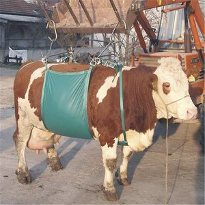 Cow Lifting Support Sling